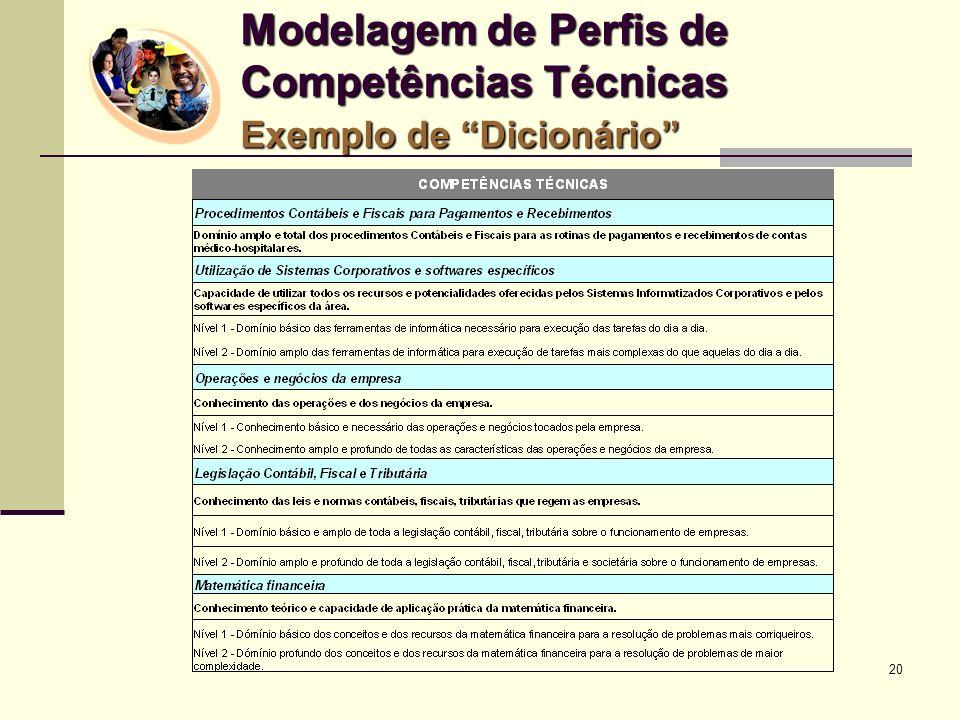 Modelagem de Perfis de Competências Técnicas Exemplo de Dicionário