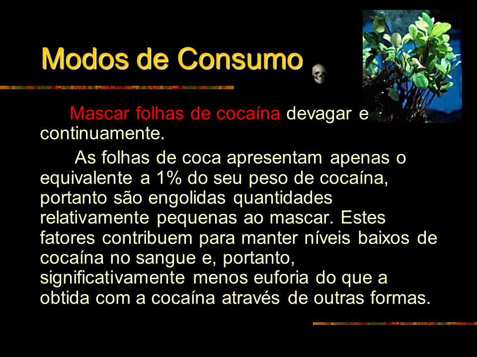 Modos de Consumo Mascar folhas de cocaína devagar e continuamente.