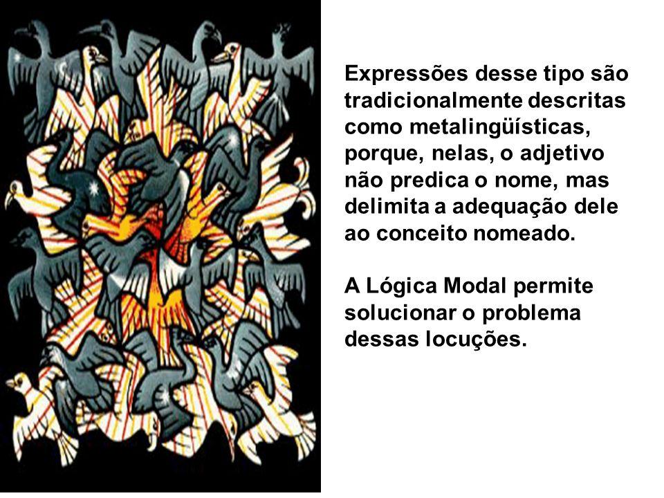 Expressões desse tipo são tradicionalmente descritas como metalingüísticas, porque, nelas, o adjetivo não predica o nome, mas delimita a adequação dele ao conceito nomeado.