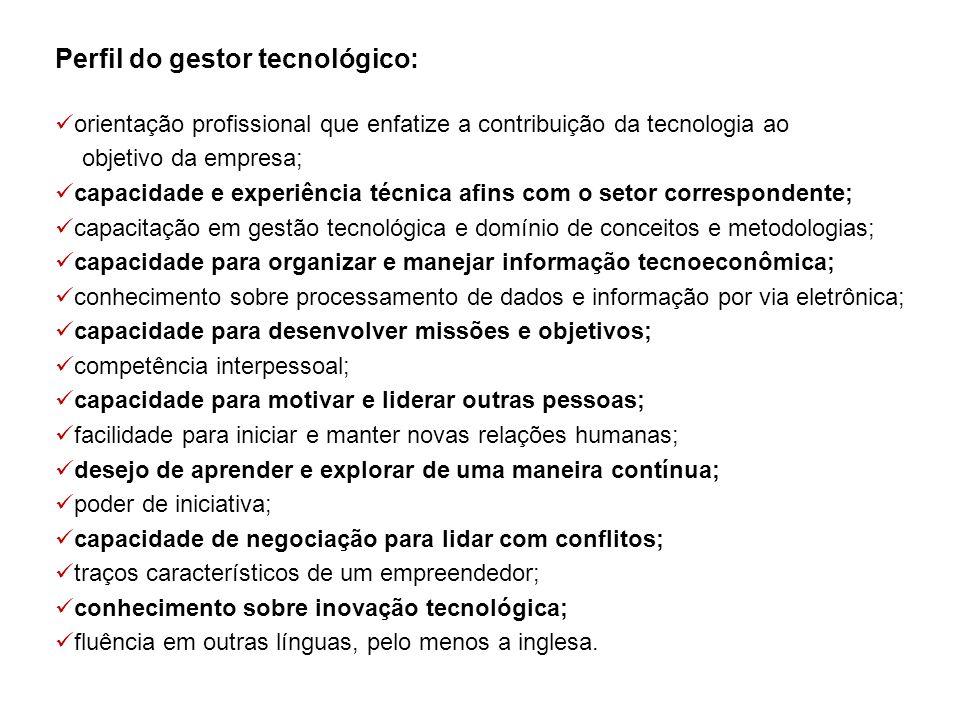 Perfil do gestor tecnológico: