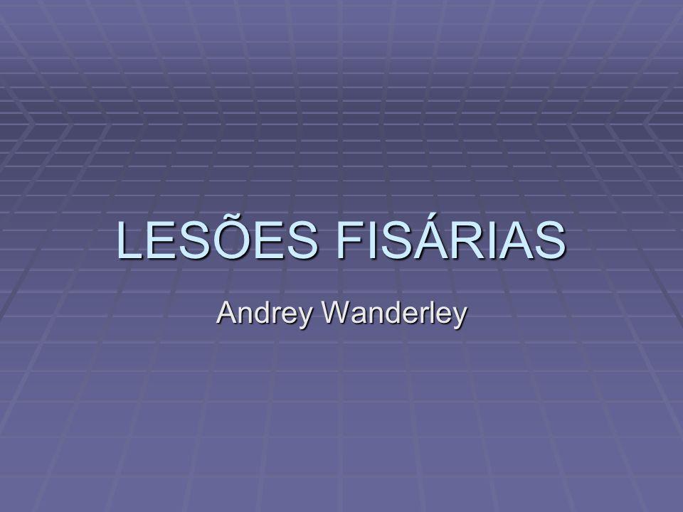 LESÕES FISÁRIAS Andrey Wanderley
