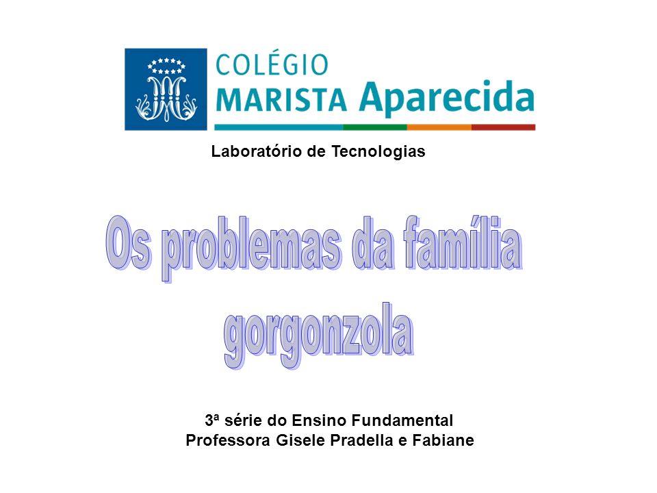 3ª série do Ensino Fundamental Professora Gisele Pradella e Fabiane