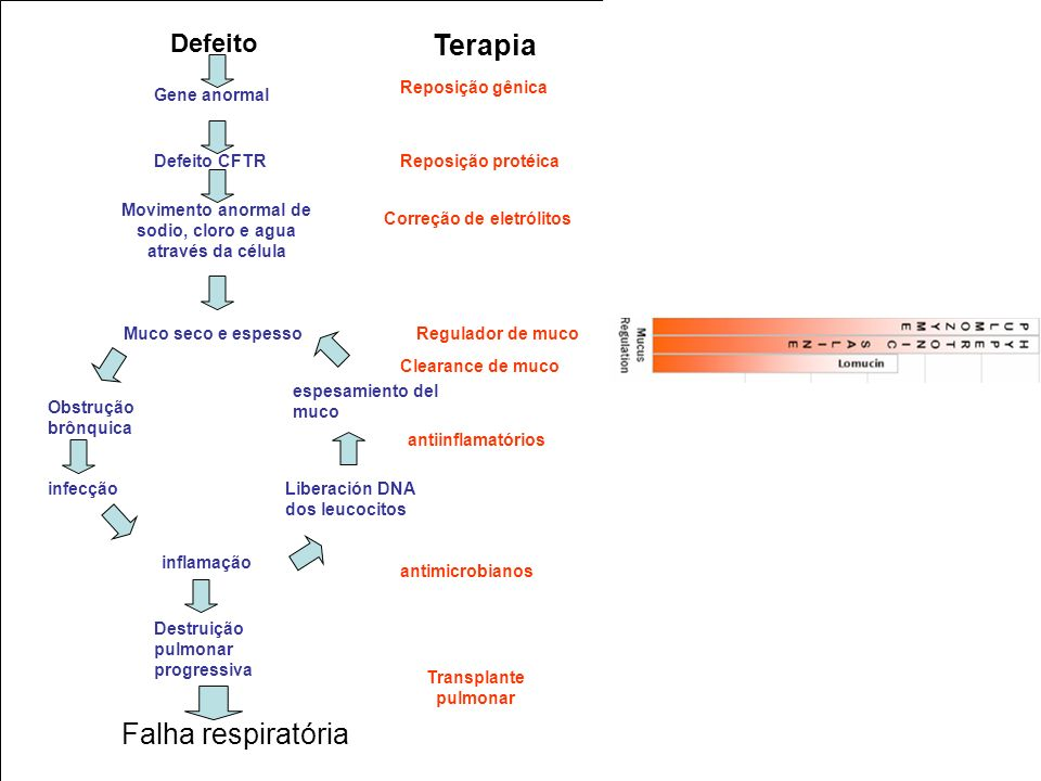 Movimento anormal de sodio, cloro e agua através da célula