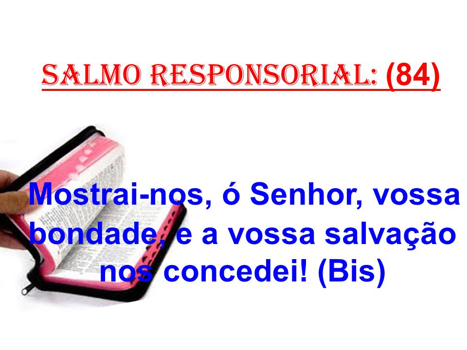 salmo responsorial: (84)