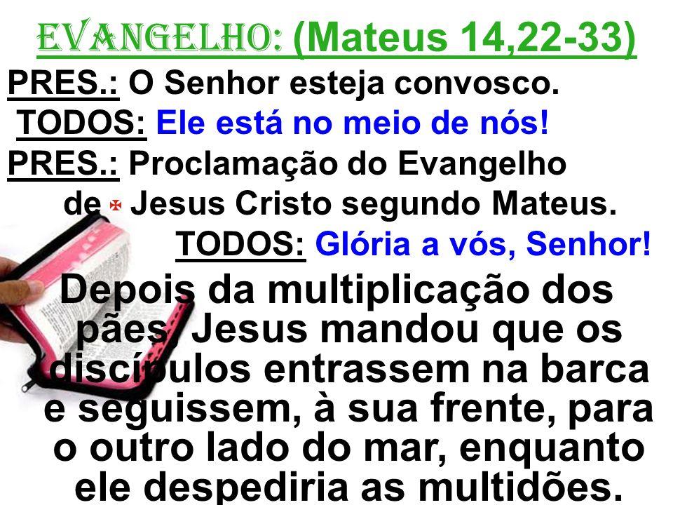 EVANGELHO: (Mateus 14,22-33) PRES.: O Senhor esteja convosco. TODOS: Ele está no meio de nós! PRES.: Proclamação do Evangelho.