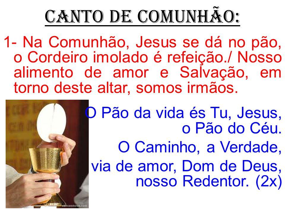 CANTO DE COMUNHÃO: O Pão da vida és Tu, Jesus, o Pão do Céu.
