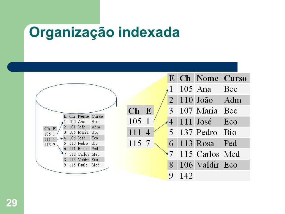 Organização indexada nuno
