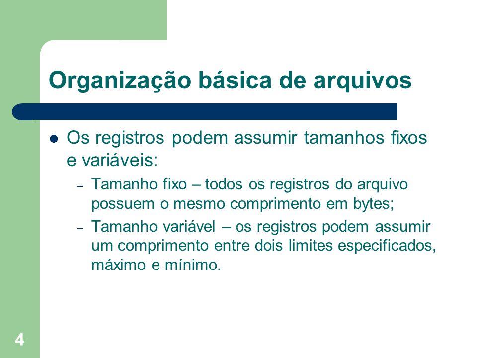 Organização básica de arquivos