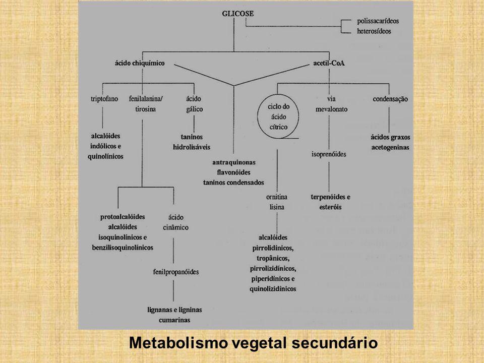 Metabolismo vegetal secundário
