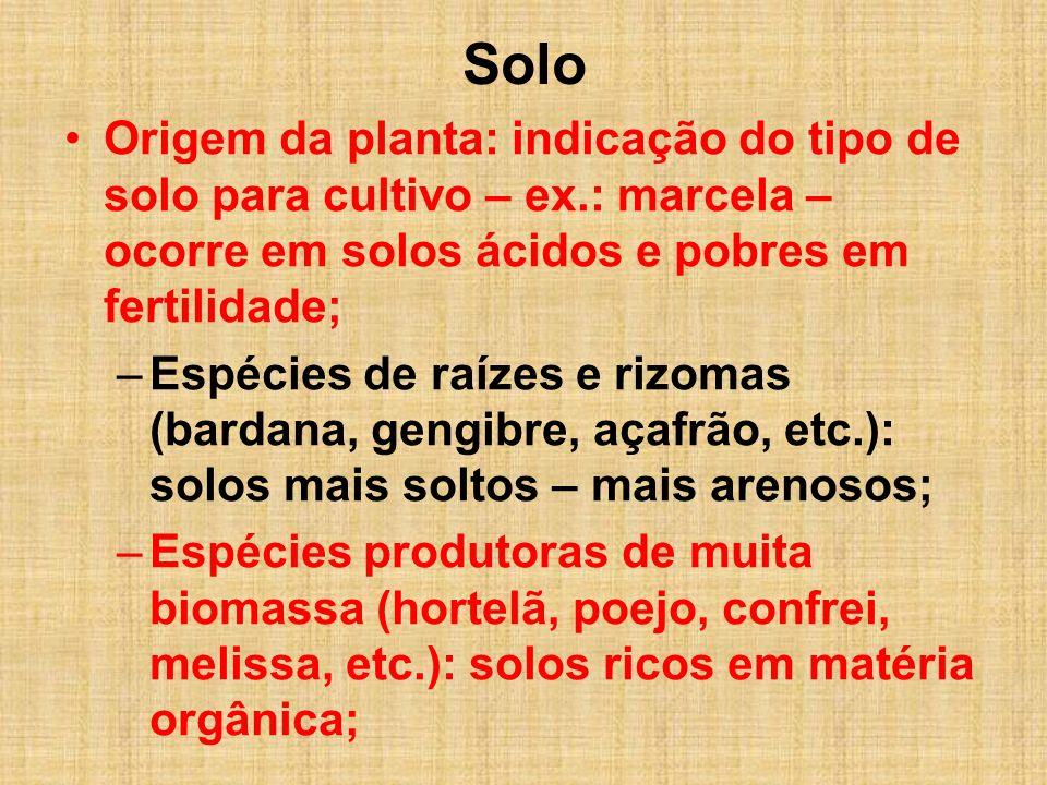 Solo Origem da planta: indicação do tipo de solo para cultivo – ex.: marcela – ocorre em solos ácidos e pobres em fertilidade;