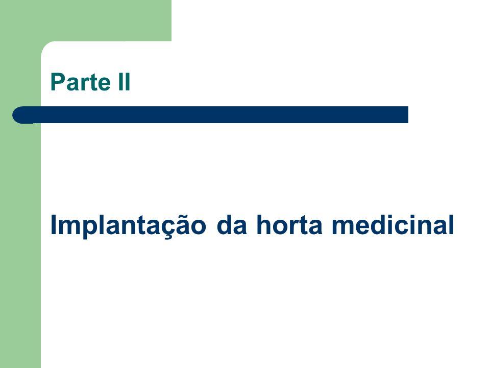 Implantação da horta medicinal