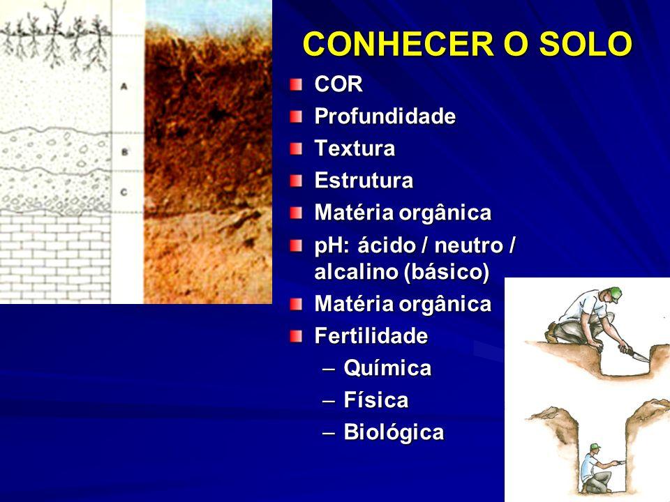 CONHECER O SOLO COR Profundidade Textura Estrutura Matéria orgânica