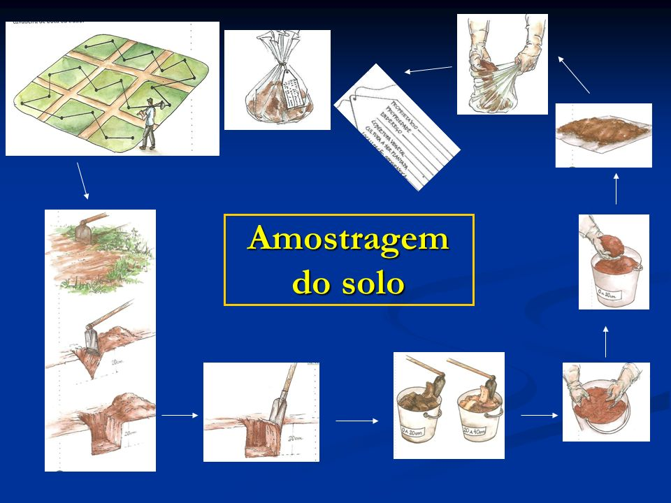 Amostragem do solo
