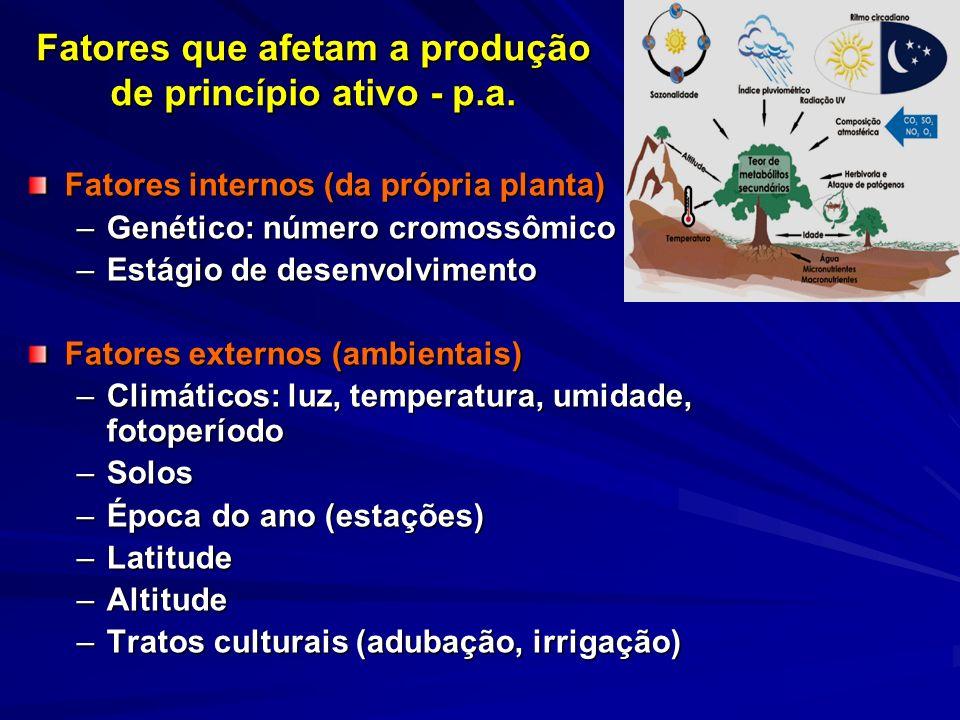 Fatores que afetam a produção de princípio ativo - p.a.