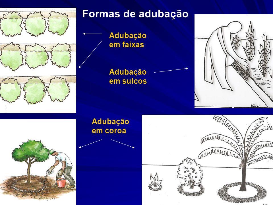 Formas de adubação Adubação em faixas Adubação em sulcos