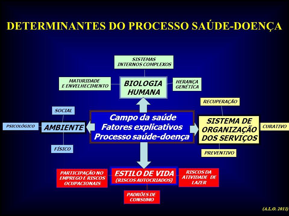 DETERMINANTES DO PROCESSO SAÚDE-DOENÇA Processo saúde-doença