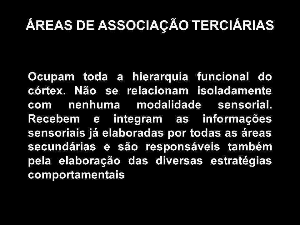 ÁREAS DE ASSOCIAÇÃO TERCIÁRIAS