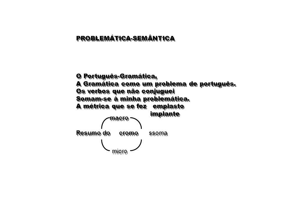 PROBLEMÁTICA-SEMÂNTICA
