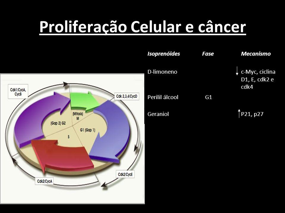 Proliferação Celular e câncer