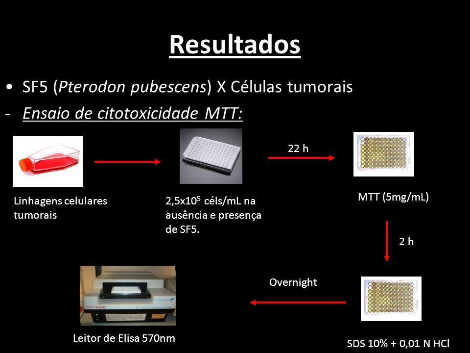 Resultados SF5 (Pterodon pubescens) X Células tumorais