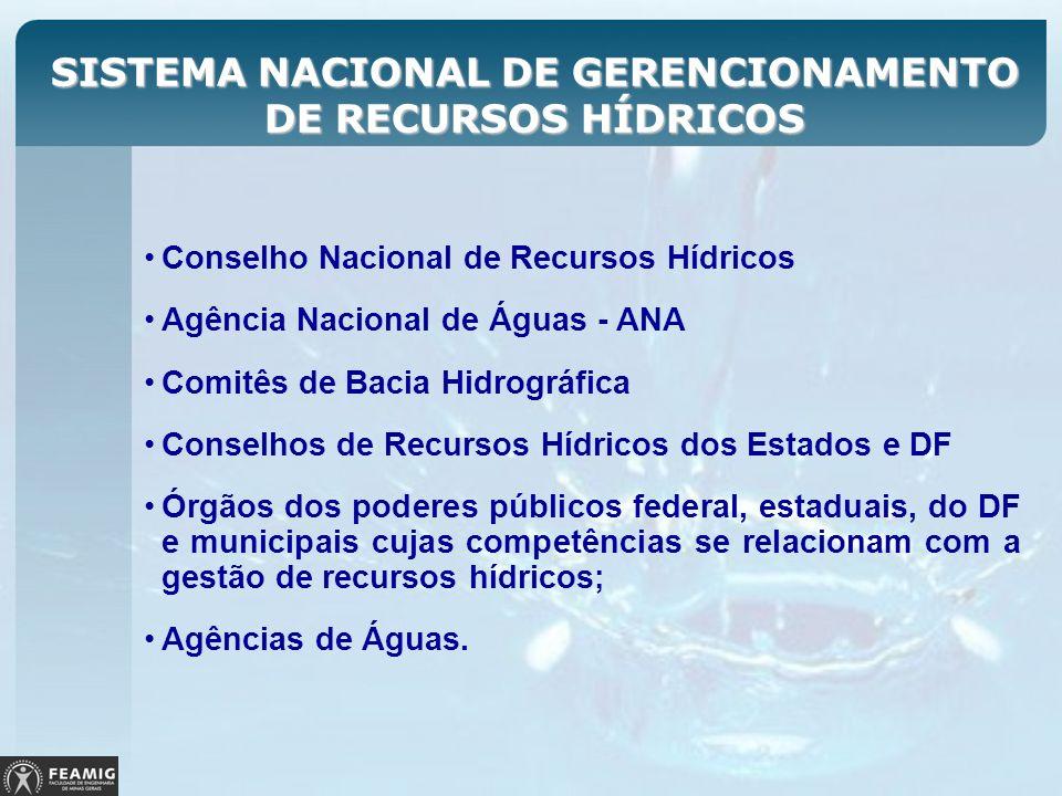 SISTEMA NACIONAL DE GERENCIONAMENTO