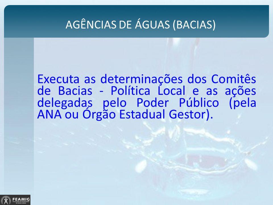 AGÊNCIAS DE ÁGUAS (BACIAS)
