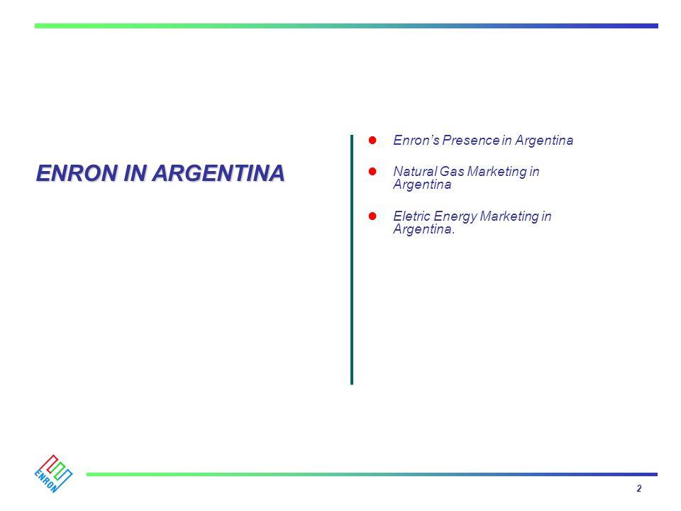 ENRON IN ARGENTINA Enron's Presence in Argentina
