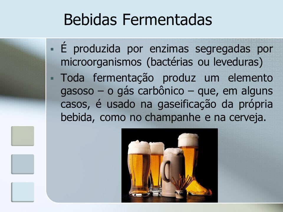 Bebidas Fermentadas É produzida por enzimas segregadas por microorganismos (bactérias ou leveduras)