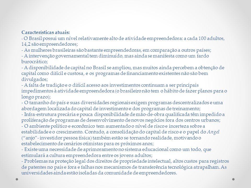 Características atuais: - O Brasil possui um nível relativamente alto de atividade empreendedora: a cada 100 adultos, 14,2 são empreendedores; - As mulheres brasileiras são bastante empreendedoras, em comparação a outros países; - A intervenção governamental tem diminuído, mas ainda se manifesta como um fardo burocrático; - A disponibilidade de capital no Brasil se ampliou, mas muitos ainda percebem a obtenção de capital como difícil e custosa, e os programas de financiamento existentes não são bem divulgados; - A falta de tradição e o difícil acesso aos investimentos continuam a ser principais impedimentos à atividade empreendedora (o brasileiro não tem o hábito de fazer planos para o longo prazo); - O tamanho do país e suas diversidades regionais exigem programas descentralizados e uma abordagem localizada do capital de investimento e dos programas de treinamento; - Infra-estrutura precária e pouca disponibilidade de mão-de-obra qualificada têm impedido a proliferação de programas de desenvolvimento de novos negócios fora dos centros urbanos; - O ambiente político e econômico tem aumentado o nível de risco e incerteza sobre a estabilidade e o crescimento.