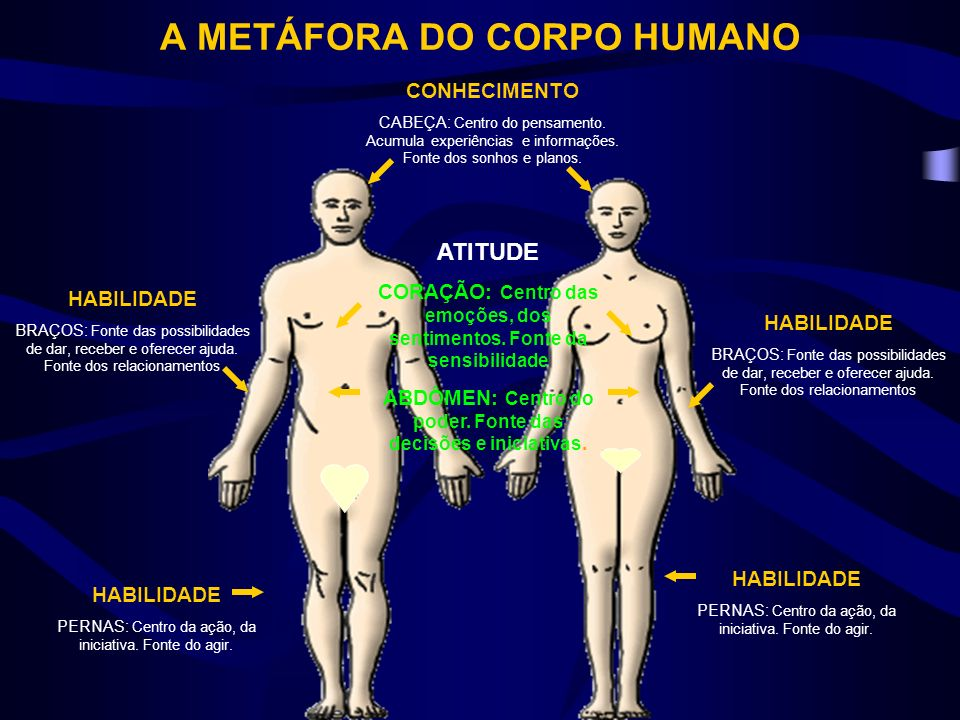 A METÁFORA DO CORPO HUMANO