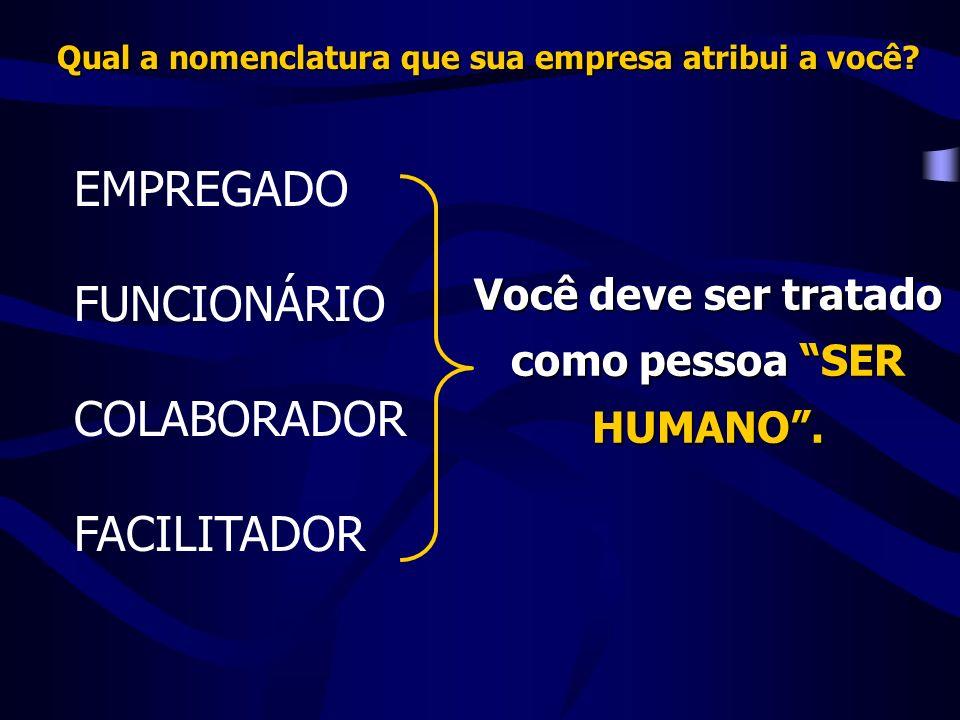 EMPREGADO FUNCIONÁRIO COLABORADOR FACILITADOR