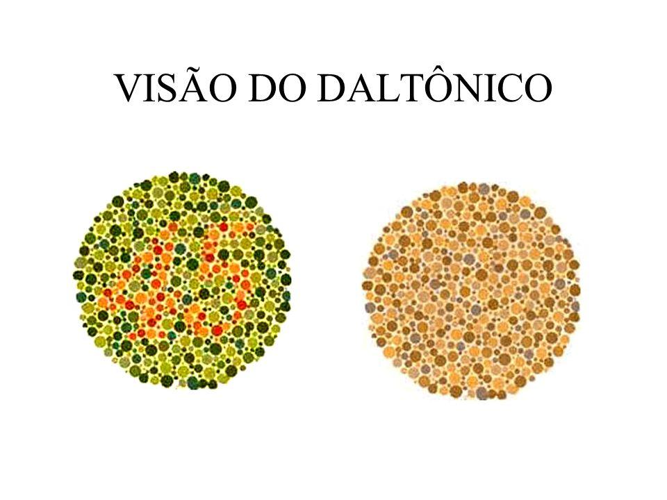 VISÃO DO DALTÔNICO