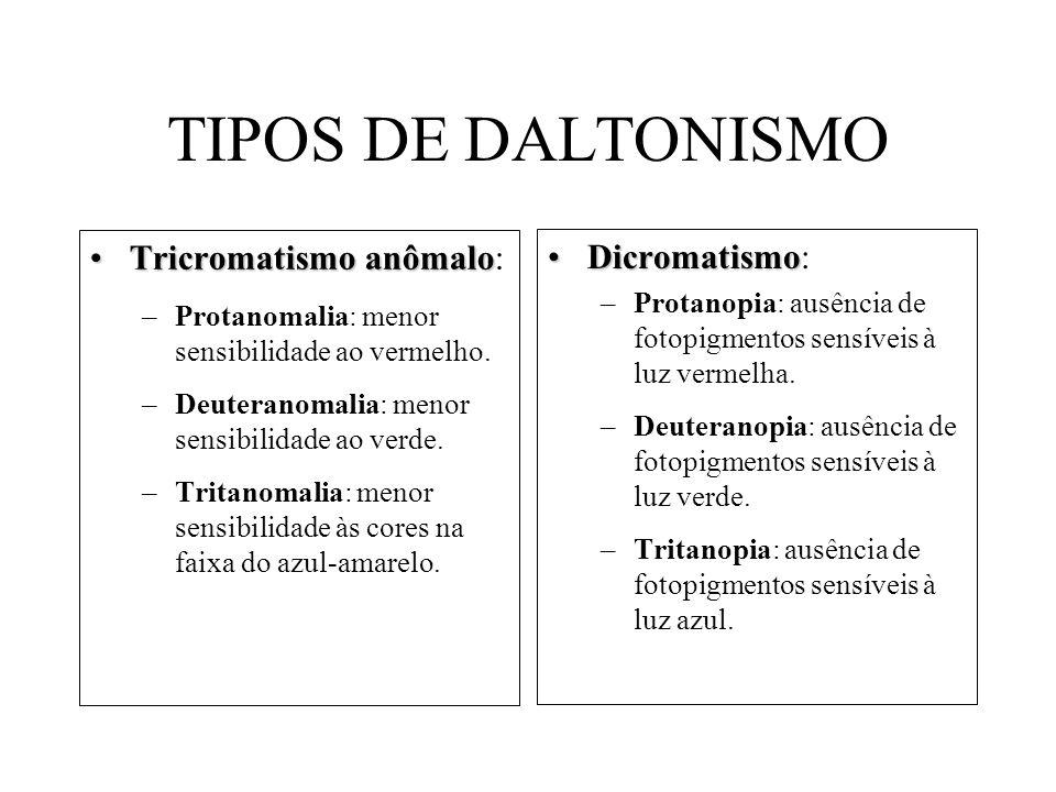TIPOS DE DALTONISMO Tricromatismo anômalo: Dicromatismo: