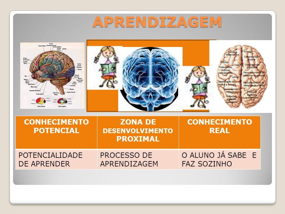 CONHECIMENTO POTENCIAL ZONA DE DESENVOLVIMENTO PROXIMAL