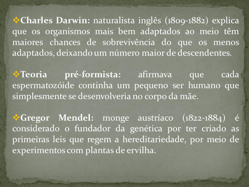 Charles Darwin: naturalista inglês (1809-1882) explica que os organismos mais bem adaptados ao meio têm maiores chances de sobrevivência do que os menos adaptados, deixando um número maior de descendentes.