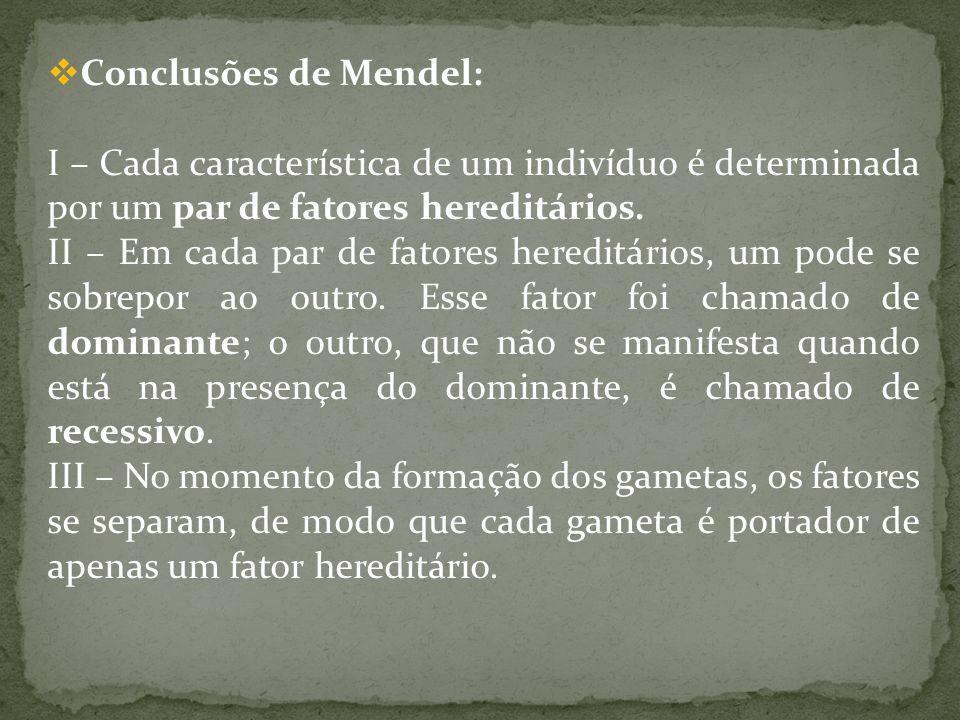 Conclusões de Mendel: I – Cada característica de um indivíduo é determinada por um par de fatores hereditários.