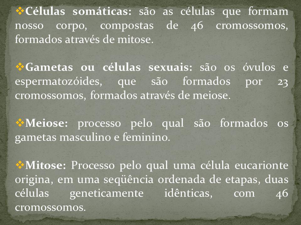 Células somáticas: são as células que formam nosso corpo, compostas de 46 cromossomos, formados através de mitose.