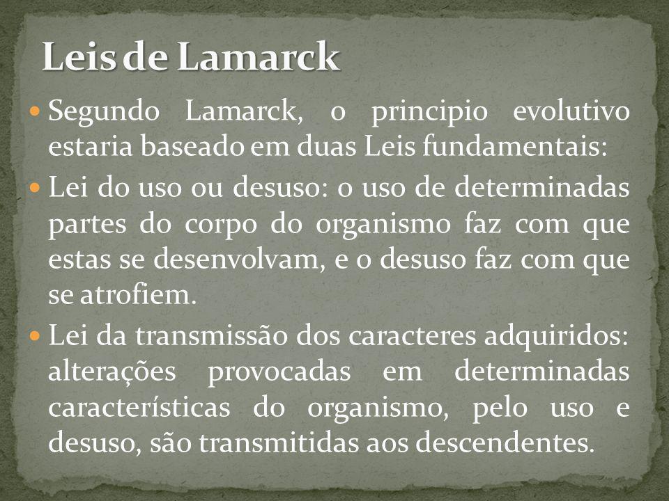 Leis de LamarckSegundo Lamarck, o principio evolutivo estaria baseado em duas Leis fundamentais: