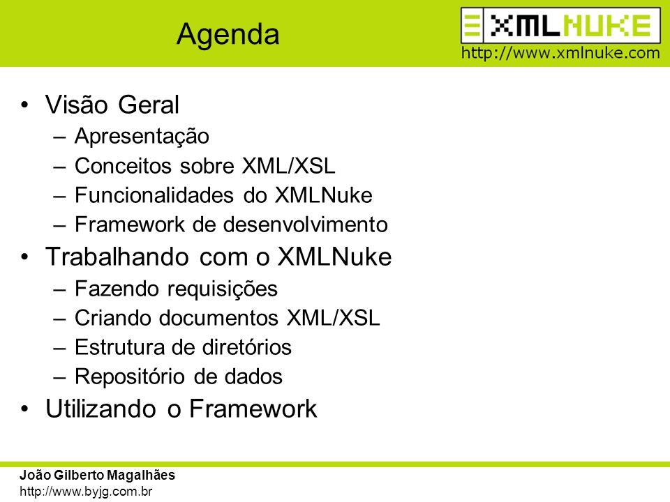 Agenda Visão Geral Trabalhando com o XMLNuke Utilizando o Framework