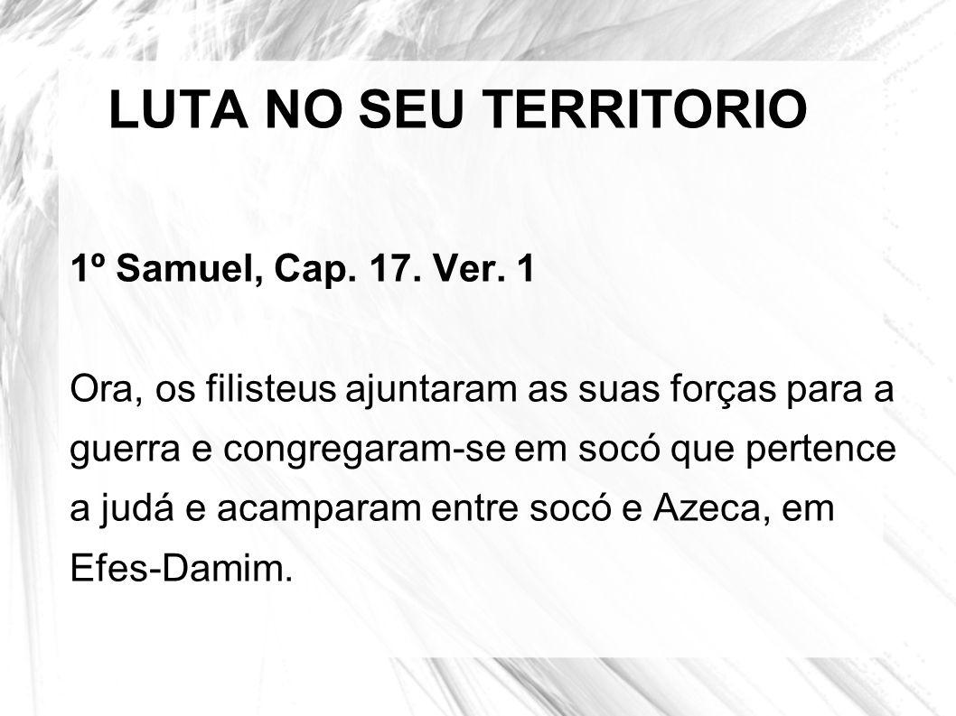 LUTA NO SEU TERRITORIO 1º Samuel, Cap. 17. Ver. 1