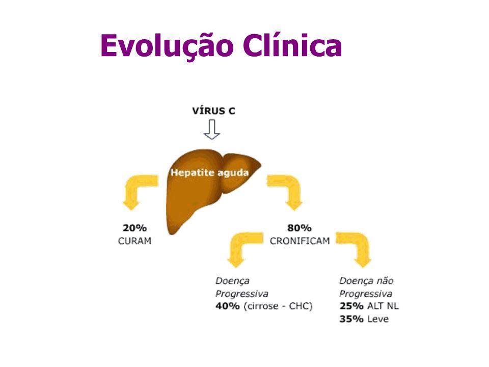 Evolução Clínica