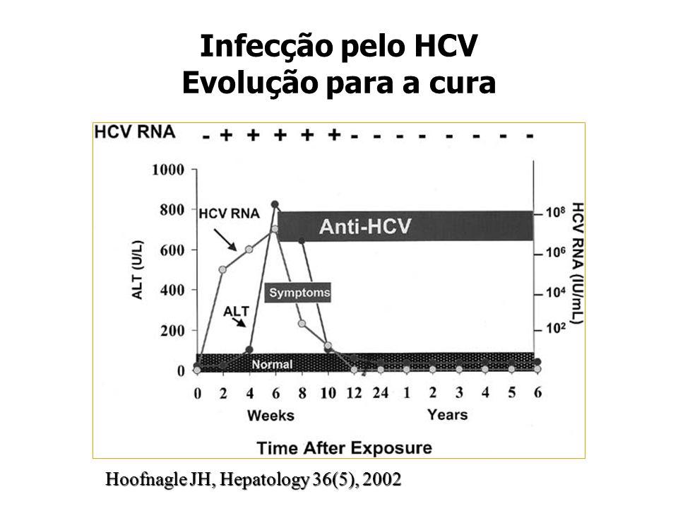 Infecção pelo HCV Evolução para a cura