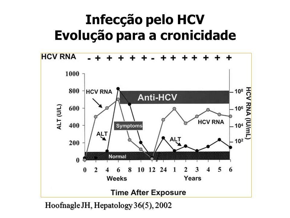 Infecção pelo HCV Evolução para a cronicidade