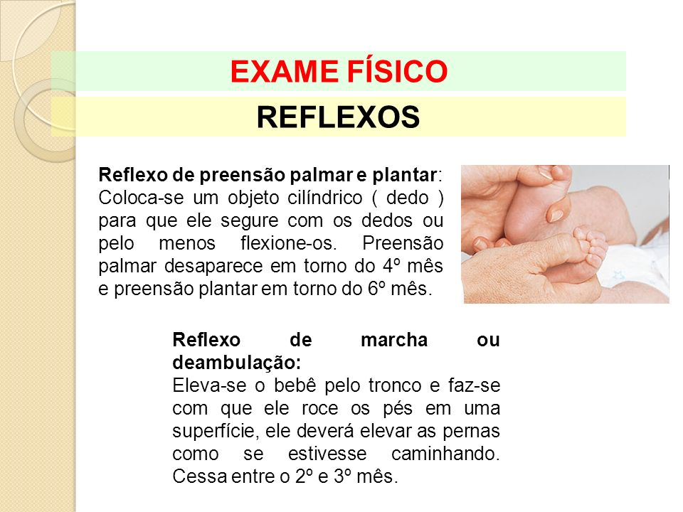 EXAME FÍSICO REFLEXOS Reflexo de preensão palmar e plantar: