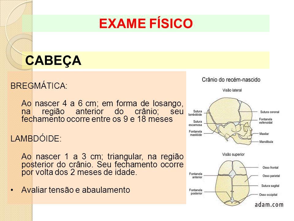 EXAME FÍSICO CABEÇA BREGMÁTICA: