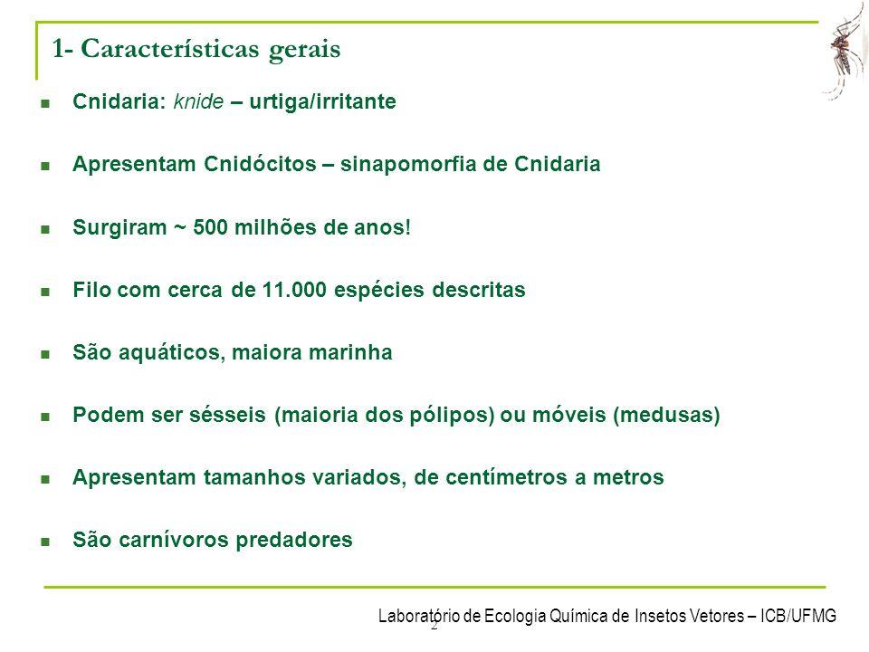 1- Características gerais