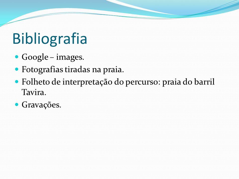 Bibliografia Google – images. Fotografias tiradas na praia.