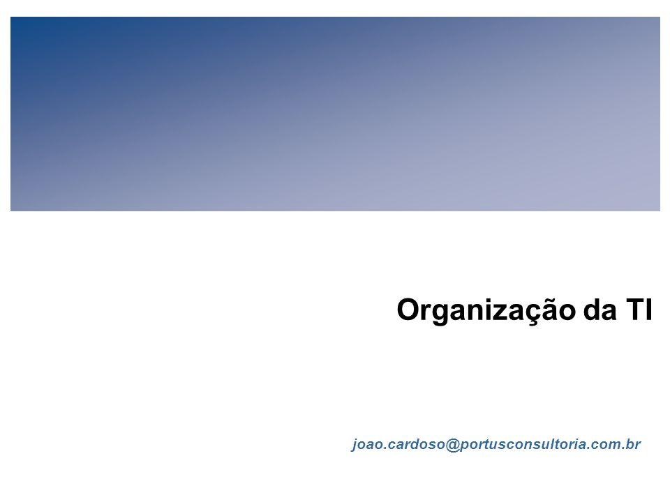Organização da TI