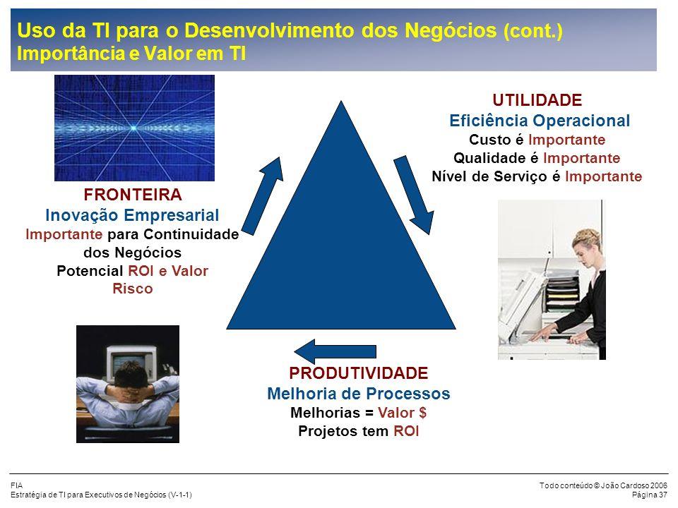 Uso da TI para o Desenvolvimento dos Negócios (cont