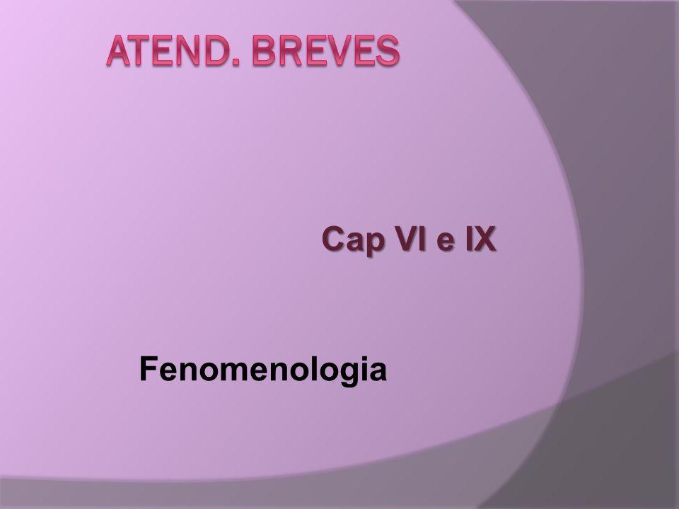 Cap VI e IX Fenomenologia